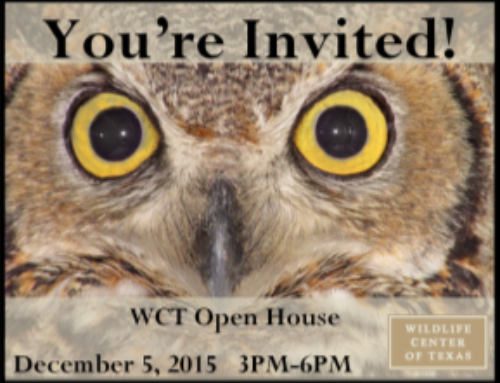 Join us at our Annual Open House